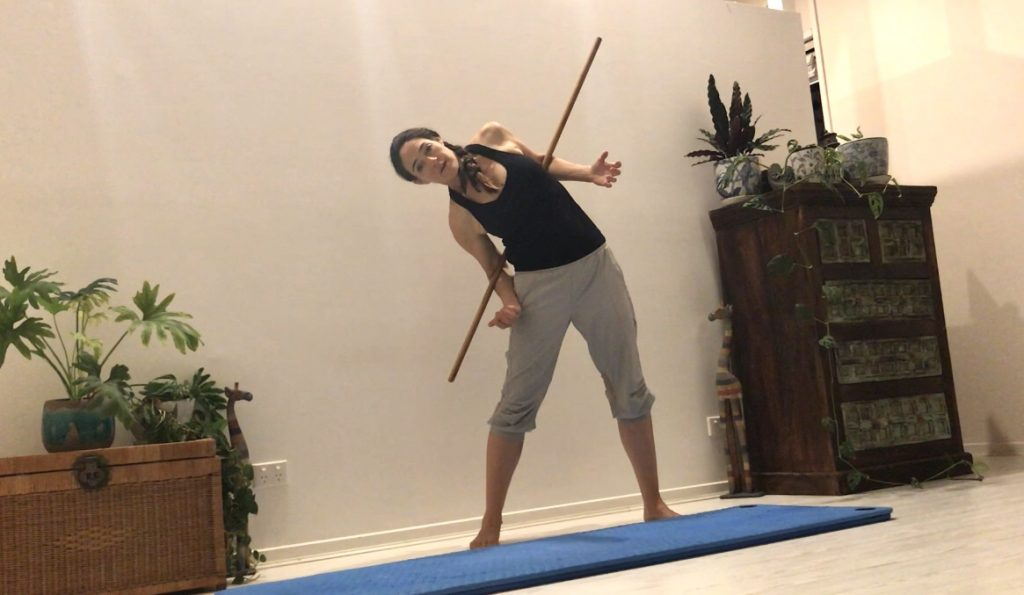 Pilates Pole 1