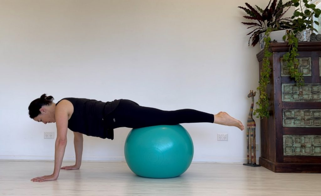 Fit Ball Challenge