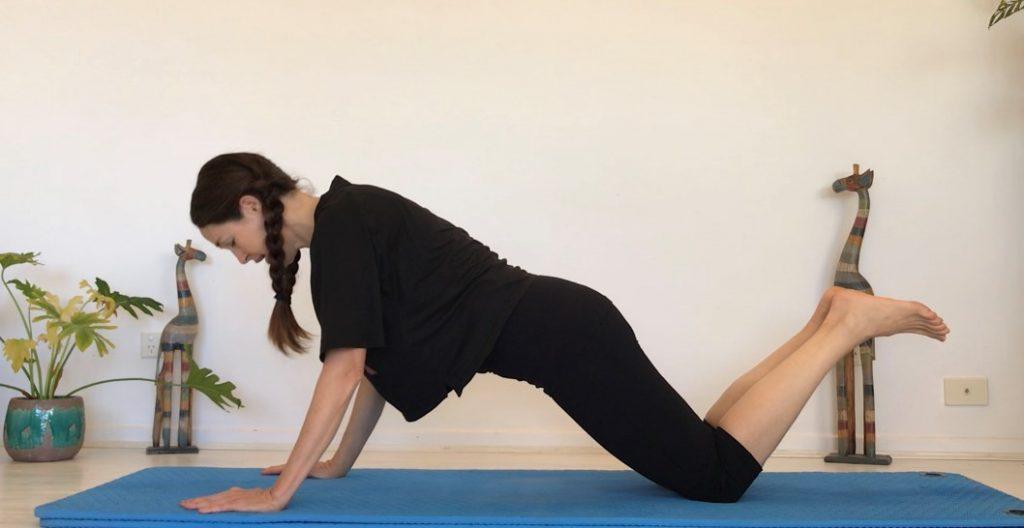 Hinges, Planks & Push-Ups